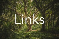 links tree